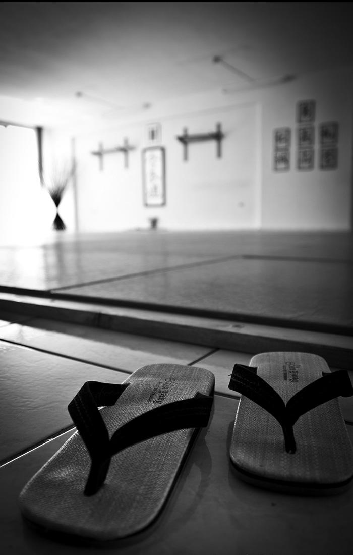 σχολές aikido