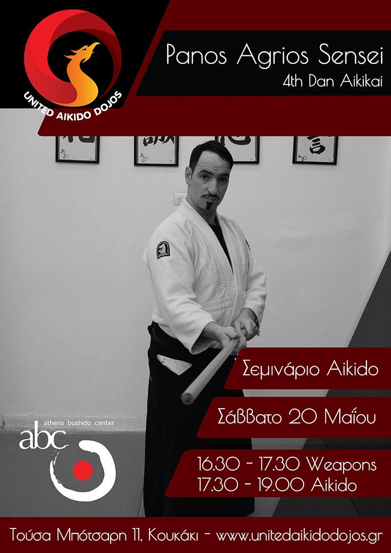 ετήσιο σεμινάριο aikido Athens bushido center